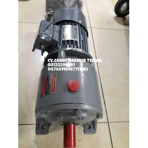 Helical Gear motor SKT