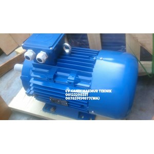 Electric Motor 3 Phase Marelli / Motor Marelli