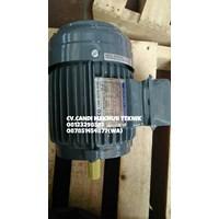 AC Motor Teco / Teco induction motor 3phase  1