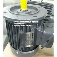 Jual AC Motor Teco / Teco induction motor 3phase  2