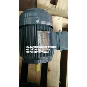 AC Motor Teco / Teco induction motor 3phase