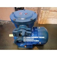 Distributor Flame proof motor  - Explosion motor  3