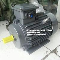 Beli Three phase Induction motor teco type foot mounted /  flange mounted  4