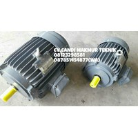 Distributor Three phase Induction motor teco type foot mounted /  flange mounted  3