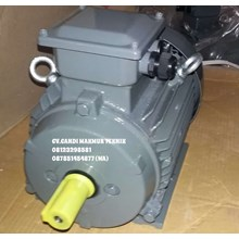 Three phase Induction motor teco type foot mounted /  flange mounted