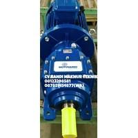 Dari Electric Gear Motor Motovario  6