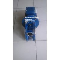 Worm Gear motor  Cheap 5