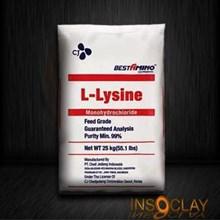 Bahan Kimia Makanan - Lysine HCL