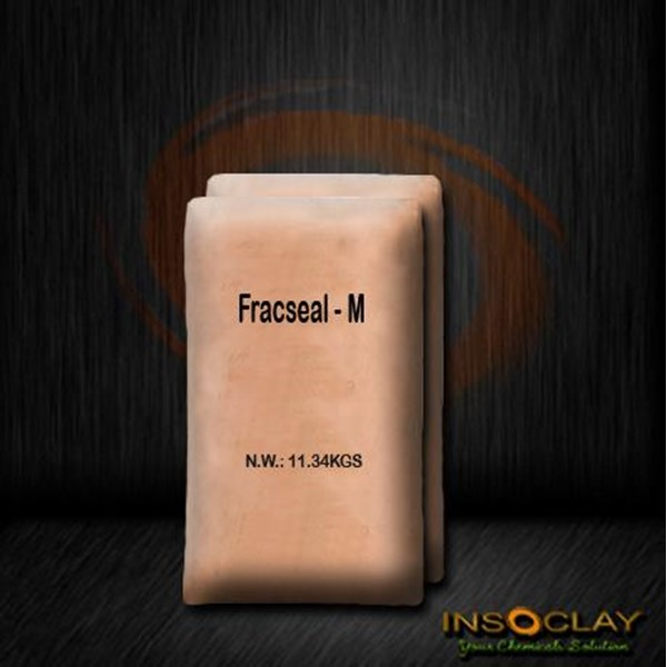 Penyimpanan Bahan Kimia - Fracseal - M