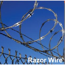 Razor Wire Forte bto 22 x450
