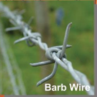 Barb Wire Forte