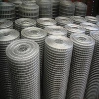 Distributor Wiremesh 1114 2mm x25x25 3