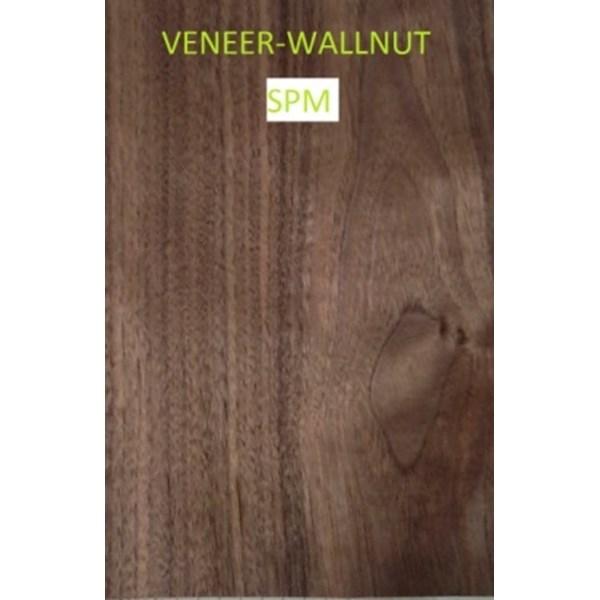 Veneer Kayu Walnut