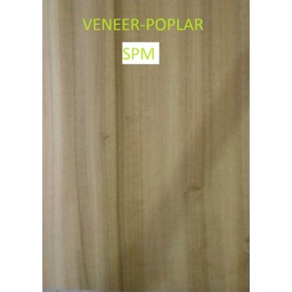 Veneer Kayu Poplar