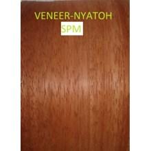 Veneer Kayu Nyatoh