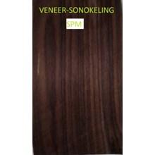 Veneer Kayu Sonokeling
