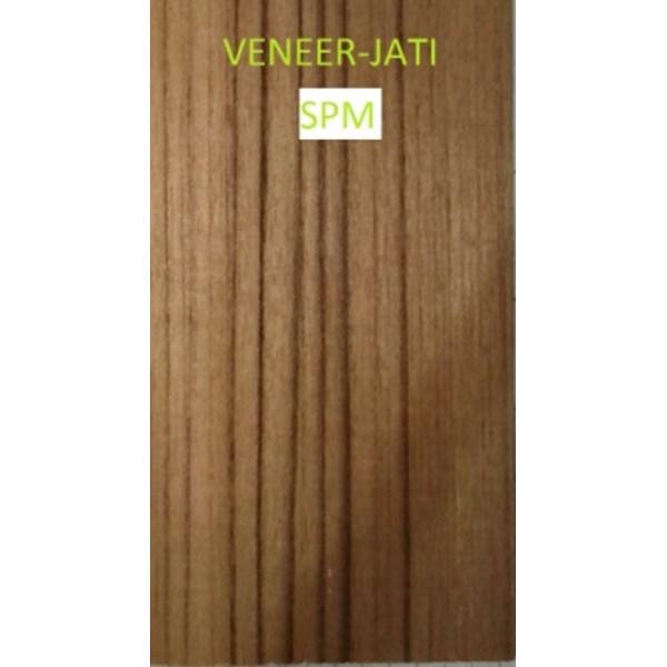 Veneer Jati