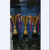 Jual Trophy Cup Logam
