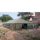 Tenda Pleton  4