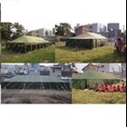 Tenda Pleton  8