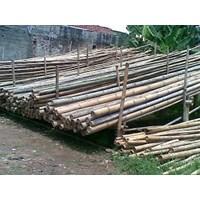 Jual Bambu Andong
