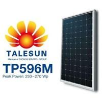Talesun TP596M