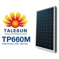 Talesun TP660M