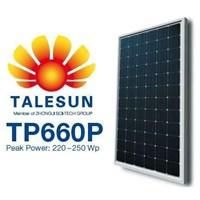 Talesun TP660P