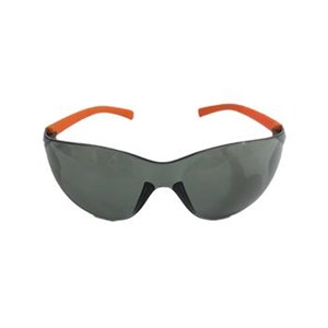 Leopard LP 22 Eye Protection