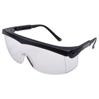 MSA 10108428 Janus AC Clear Eye Protection