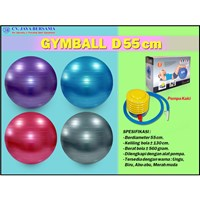 Gymball Exercise D55 cm 1