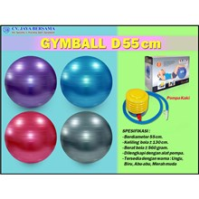 Gymball Exercise D55 cm