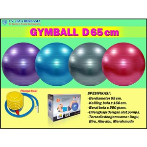 Gymball Exercise D65 cm