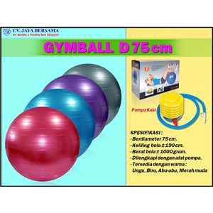 Gymball Exercise D75 cm