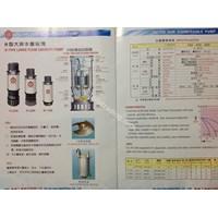 Large Capacity Pump Tai-Yih Sun