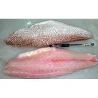 Jual Crimson Snapper Fillet Skin On 08