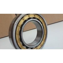 Silinder Roller Bearing