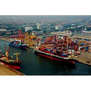 Ekspedisi Jakarta By Indotrans Sukses Makmur