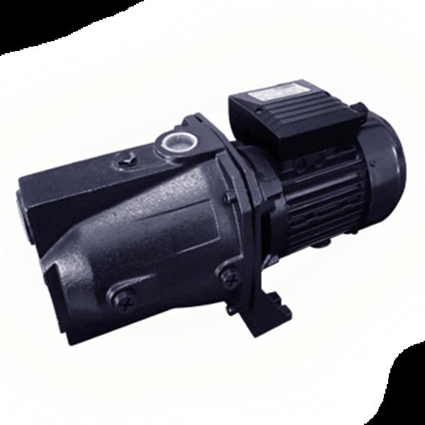 Water Pump Sanju Sj 300 P