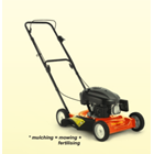 Mesin Pemotong Rumput Dorong Mulching Mower Tanika 1