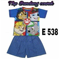 Baju Tidur anak bandung cowok THP E 538(uk 4-6)