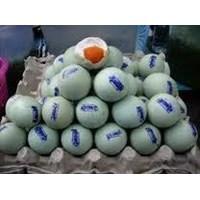 Jual Telur Bebek Asin