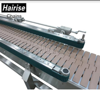 Chain Conveyor Hairise