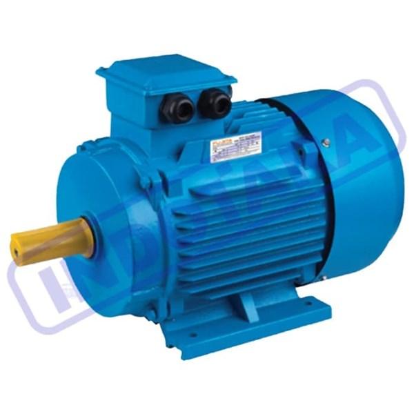 Fujita Electric Motor 3 Phase Y2-112M-2