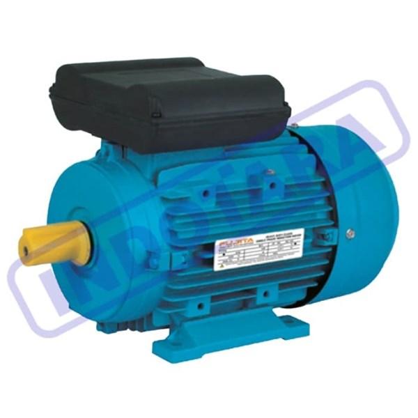 Fujita Electric Motor 1 Phase ML8022