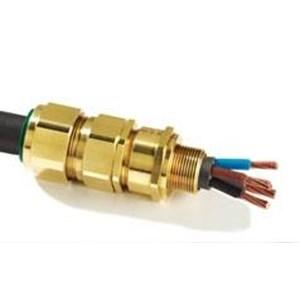 Dari Cable Gland CMP E1FU Of Hazardous Area 0