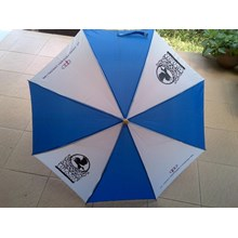 Promotional Umbrella Folding Umbrella Golf Umbrella