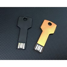 Promotional Usb Flash Disk Fdmt17 Gold 4 Gb