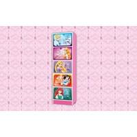 Jual Locker Box Karakter Princess LB 540 PCS