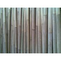 Jual Bambu Apus